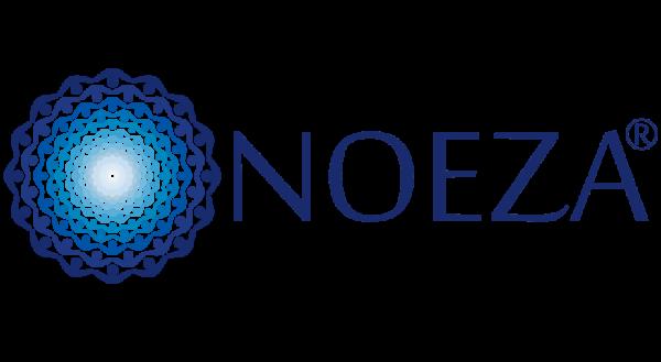 LOGOTYP-NOEZA Mielec uslugi szkoleniowo doradcze RODO projekty UE