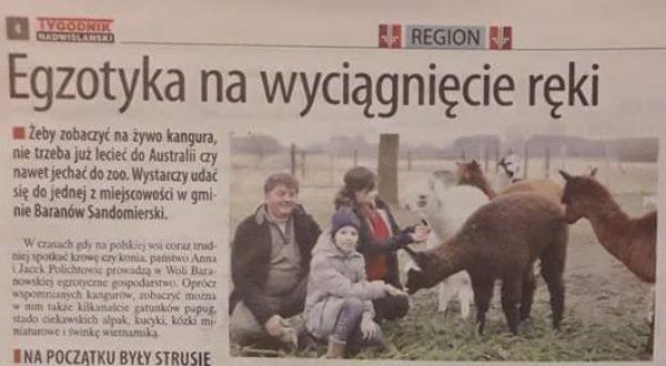 media o Ranczo Aplaka z Woli Baranowskiej