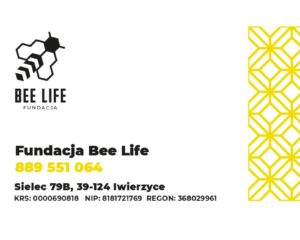 Ratujmy pszczoły z Fundacją Bee Life