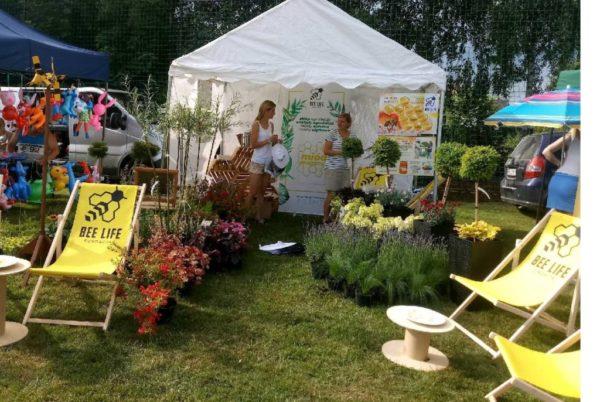 Sklep ogrodniczy Fundacji Bee Life