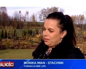 Fundacja BEE LIFE w TVP3Rzeszów
